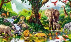 Adaptación de los animales al medio ambiente