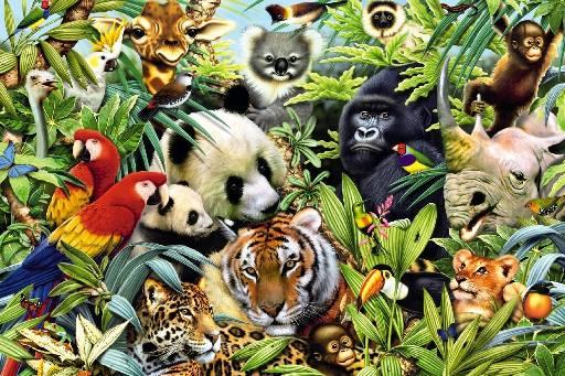 Qué son los animales