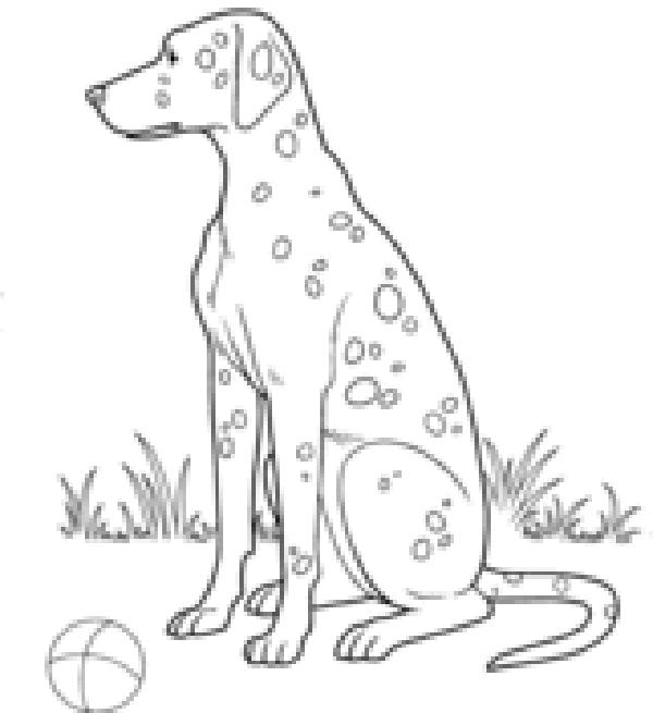 Dibujos De Perros Dálmatas Para Colorear