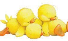 Dibujos de patos bebés