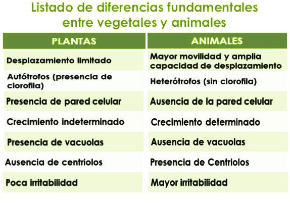 Diferencia del reino animal y vegetal