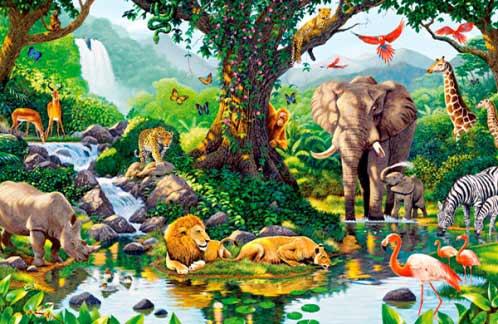 ¿Qué es el reino animal?