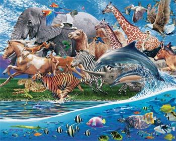 Importancia del reino animal