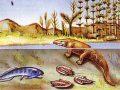 Origen y evolución del reino animal
