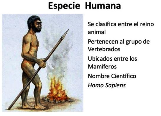 ¿Por qué los humanos pertenecemos al reino animal?