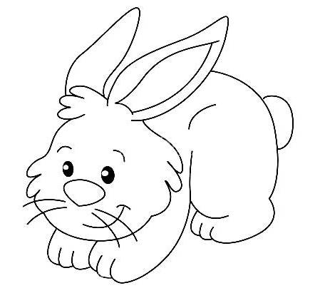 Dibujos de conejos para colorear