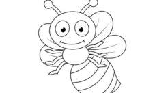 Dibujos de animales invertebrados para colorear